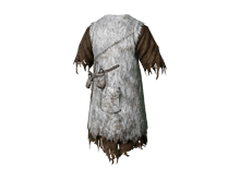 dragon-acolyte-robe-lg.png