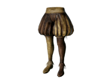 jester's tights